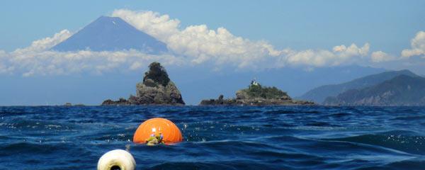 フト根のブイから見た田子島と富士山